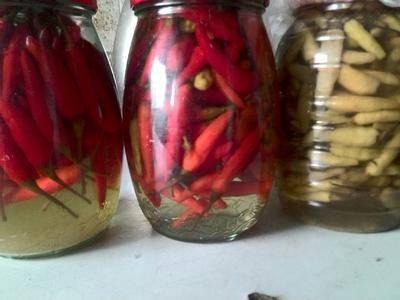 四川省成都市武侯區腌包菜 老壇腌制的泡小米辣椒,18元/瓶