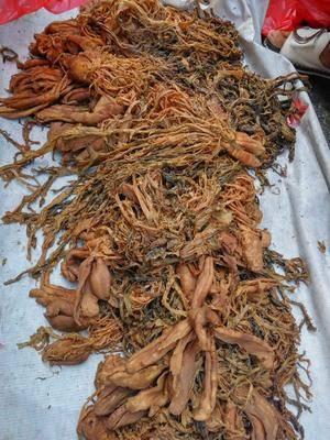 廣西壯族自治區賀州市八步區腌制大頭菜 頭菜