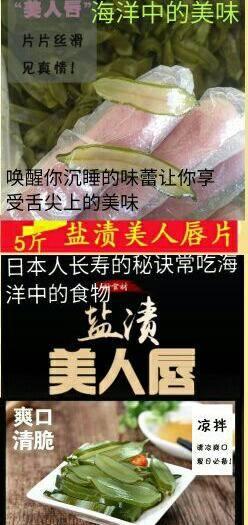 河北省唐山市遷安市海白菜梗切片 鹽漬美人唇片日本人長壽的秘訣常吃海洋中的食物5斤裝包郵