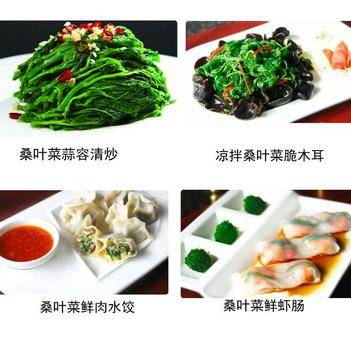 速凍桑葉菜 桑芽菜(速凍蔬菜) 綠色健康,用心呵護
