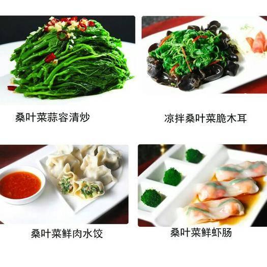 江西省九江市修水縣速凍桑葉菜 桑芽菜(速凍蔬菜) 綠色健康,用心呵護