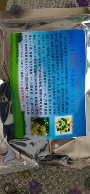 河北省沧州市泊头市螯合铁肥 果树复壮复绿根部填注胶囊,根治黄叶,小叶病,注一次管二年