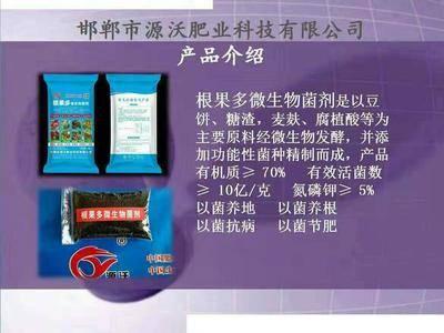 河北省邯郸市永年县有机肥料 根果多有机菌肥