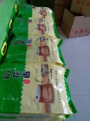 黑龙江省哈尔滨市五常市稻花香二号大米 产地直供,五常稻花香米,农民合作社自己种植
