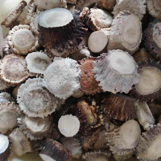 吉林省長春市雙陽區鹿角 馬鹿托盤粉