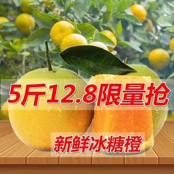 【预售】黔阳冰糖橙  一件代发  欢迎各大电商平台合作