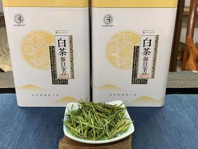 福建省泉州市安溪縣 【明前?安吉白茶】一滴水   一杯茶450/斤
