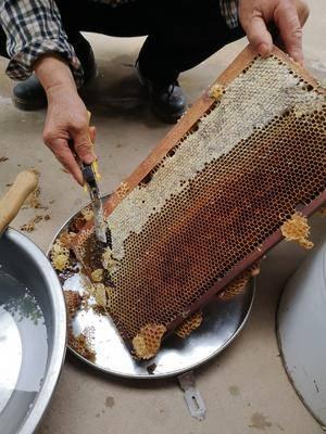 陜西省寶雞市眉縣 蜂蜜