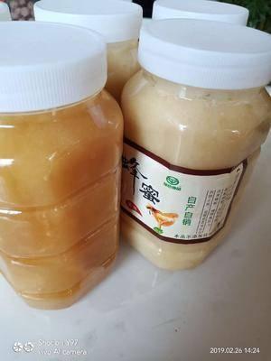 陜西省渭南市富平縣黑蜂蜂蜜 自家蜜糖純潔甜純蜜糖沒有假
