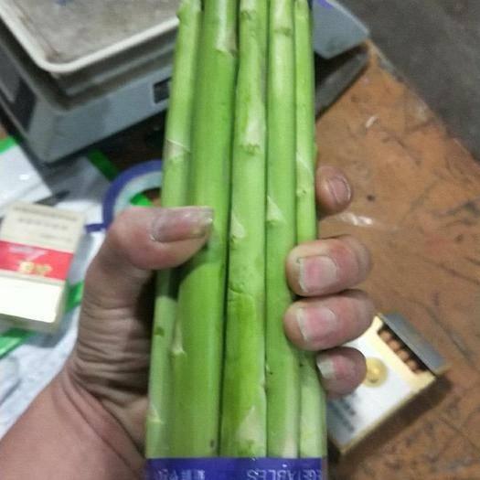 江苏省南通市海门市绿芦笋 30cm以上