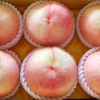 正宗無錫陽山水蜜桃 甄選高品質 支持代發 量大從優歡迎咨詢