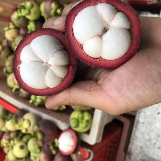 云南省昆明市官渡区 泰国进口新鲜山竹 一件代发 坏果包赔