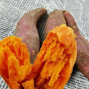 蜜薯。正宗六鳌蜜薯大果。百分百海边沙地种植。