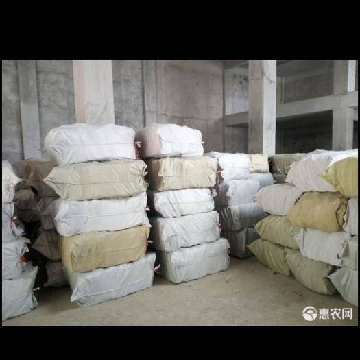 廣西壯族自治區玉林市容縣肉桂 每年低價出售