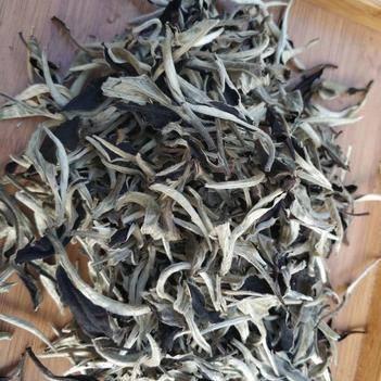2019年頭春,云南景谷特級月光白,一芽一葉,白茶1斤裝