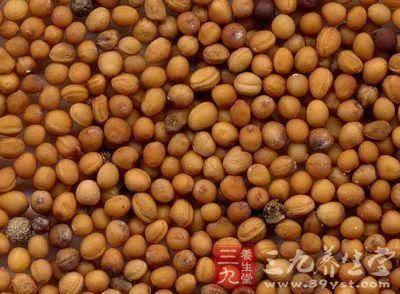 安徽省亳州市譙城區萊菔子油
