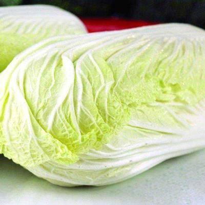 河北省張家口市尚義縣 張家口,大白菜~玲瓏黃 橄欖菜~有機菜花~萵筍種植基地