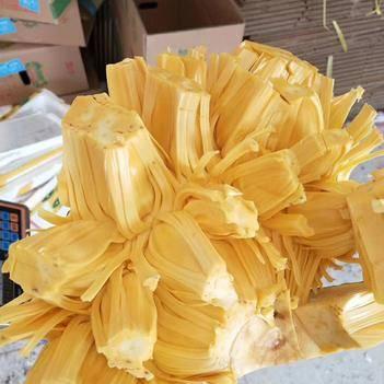 【全網超低價】海南菠蘿蜜 果園直銷 28-32斤 包郵