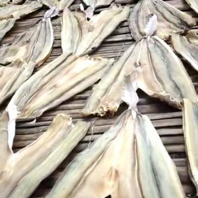 廣東省湛江市赤坎區沙魚干 北部灣天然爆曬沙仔干