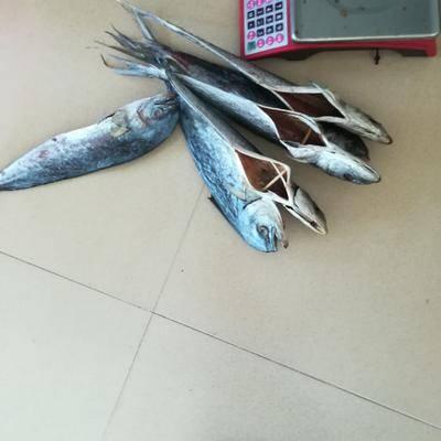 廣東省陽江市陽西縣青魚干 南海本地的青料魚干/肉質香堅韌帶有彈牙!配飯,配粥都入口甘香