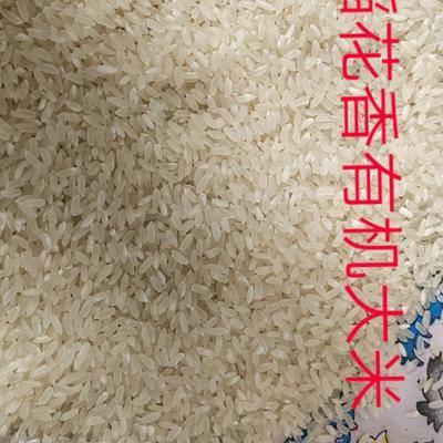 吉林省通化市梅河口市奇麗有機大米 稻花香