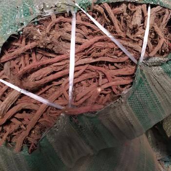 紫花丹参 产地批发,质量好,无硫,量大优惠