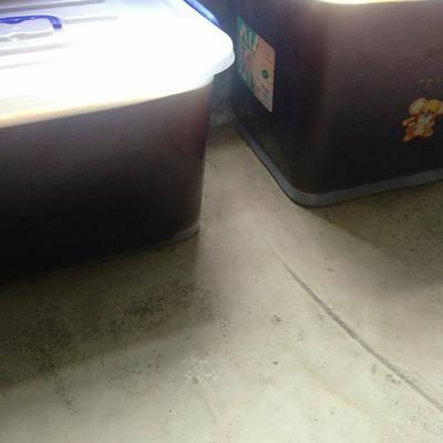 廣西壯族自治區百色市右江區野生蜂蜜 野生蜜蜂糖