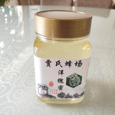 內蒙古自治區包頭市土默特右旗槐花蜜 19年純正天然,無添加高濃度洋槐蜜