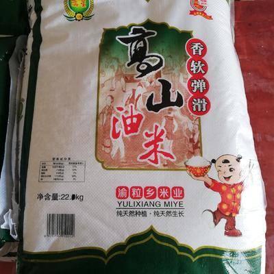 重慶九龍坡區秈米 重慶高山油米