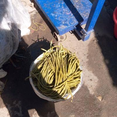 湖北省武漢市新洲區腌制豆角