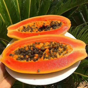 红心木瓜9斤新鲜发货长期供货  一件代发