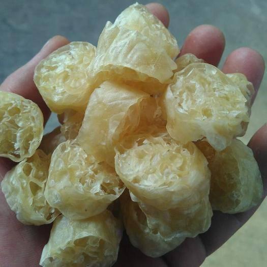 河北省保定市蓮池區素雞 面藕