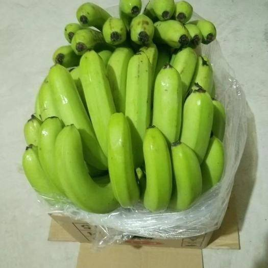 河北省邯鄲市叢臺區 廣西   云南香蕉  口感甜不硬心不黑心