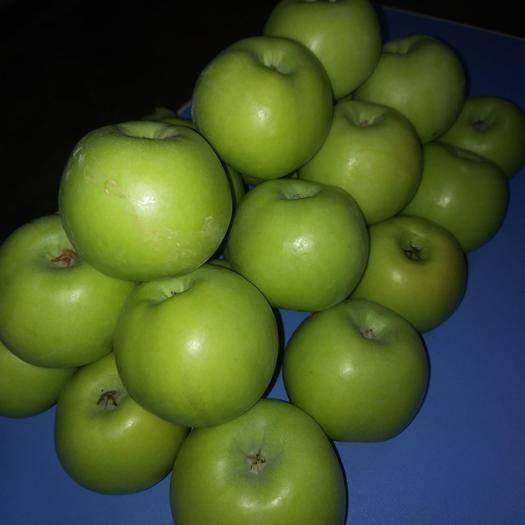 云南省昭通市昭阳区 昭通丑苹果,青香蕉苹果现货秒发(8元一斤包邮)
