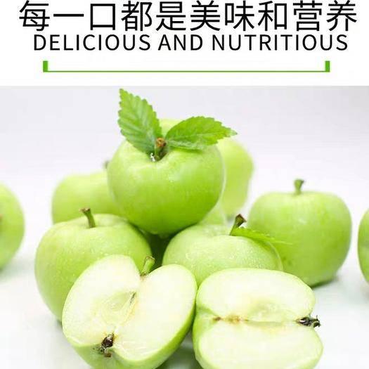 四川省成都市青羊区 现摘现发青苹果 不打农药不打蜡 10斤只要28!