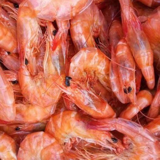 山东省滨州市沾化区烤虾干 新货上市了,烤干虾,口感好,味美,味鲜,老人小孩的零食。