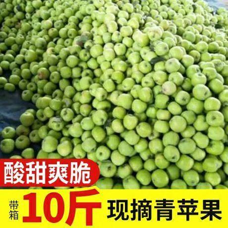 四川省成都市青羊区 带箱10斤 净重9斤现货青苹果