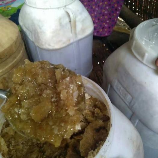 贵州省遵义市桐梓县野生蜂蜜 正中山上采的