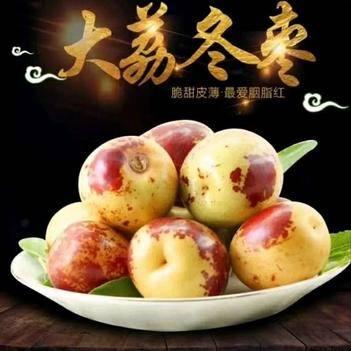 陕西大荔冬枣果园现摘现发新鲜水果又甜又脆非沾化青枣