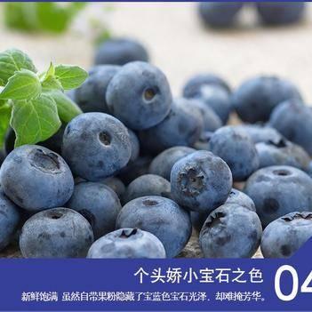 智利进口鲜果蓝莓,当季新鲜时令水果顺丰包邮