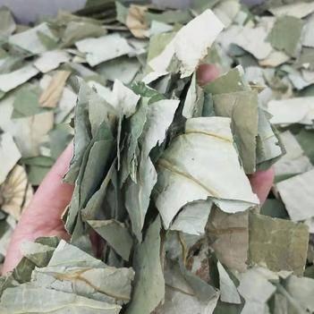 荷叶茶 无硫 产地直销 批发 零售 一斤包邮