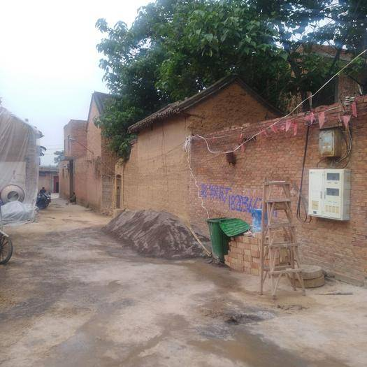 河南省洛陽市偃師市包裝工 力工團隊,吃苦耐勞,踏實肯干