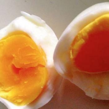 土雞蛋 河南新鄉  無抗420枚 蛋清稠 蛋黃大 口感好