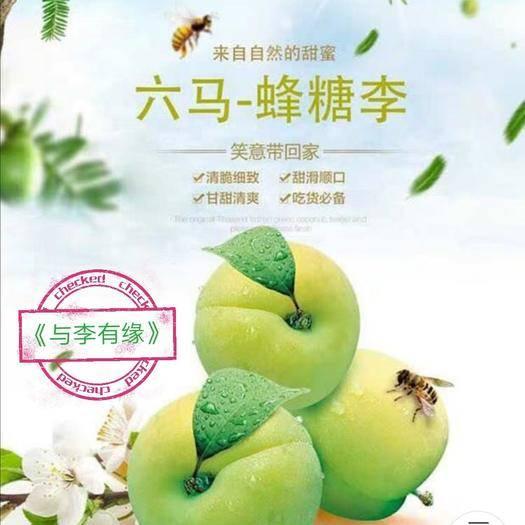 贵州省安顺市镇宁布依族苗族自治县 正宗六马蜂糖李,甜如初恋,是李子中的精品