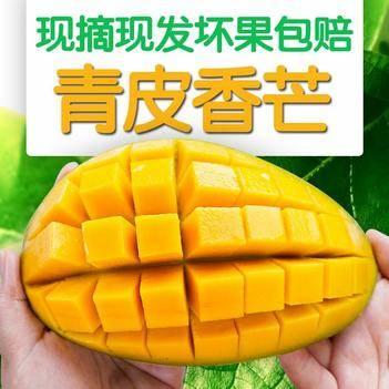 廣西青皮芒果甜心金煌芒果大青香芒10斤當季新鮮水果