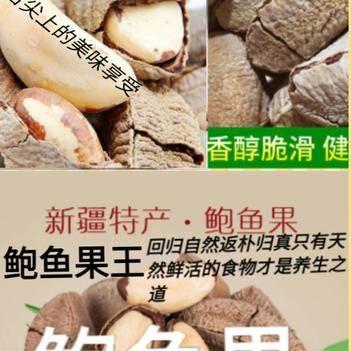 沙漠果 鮑魚果堅果之王稀有果王新疆特產鮑魚果一斤裝包郵