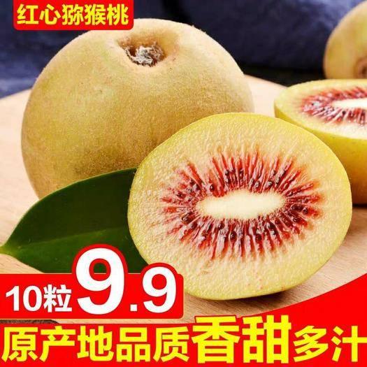 四川省成都市蒲江县 四川红心猕猴桃10枚9.9元包邮硬果发出
