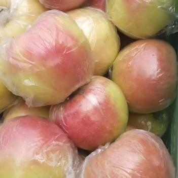 蘋果嘎啦大量供應,美八,早富士供應,質量保證,歡迎來采購。