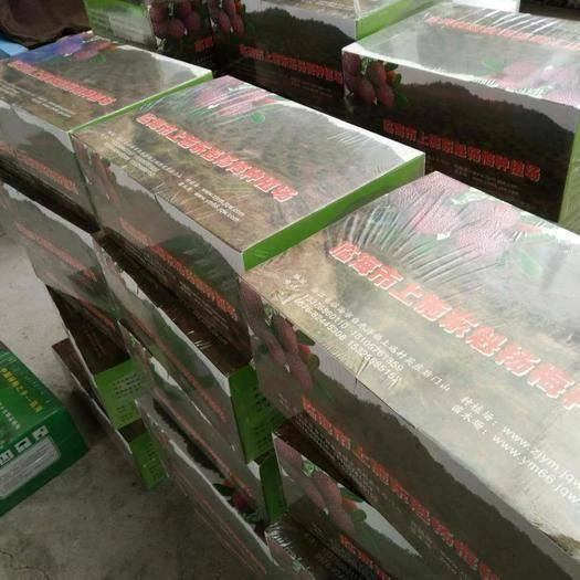 浙江省臺州市黃巖區 真空包裝東魁楊梅′每一箱6斤