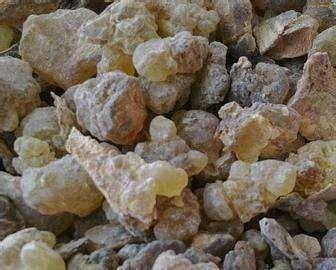 河北省保定市定州市 乳香   批发零售各种规格